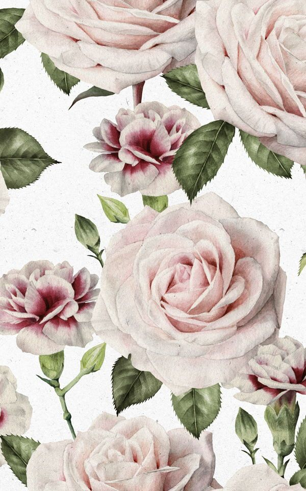 Vintage Roses and Carnation Wallpaper Flower wallpaper