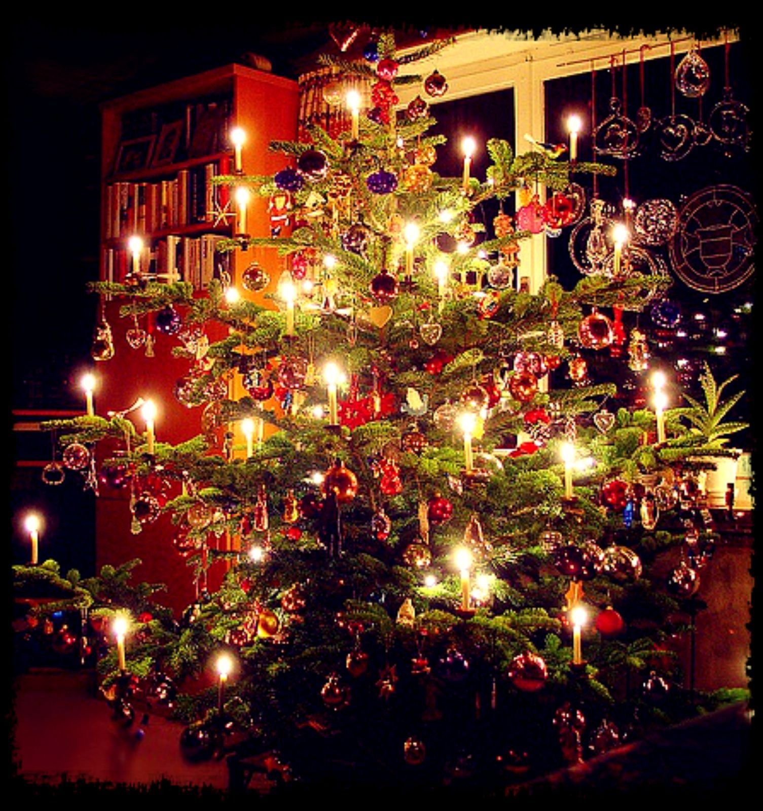 The First Known Christmas Tree (Der Tannenbaum) Was Set Up