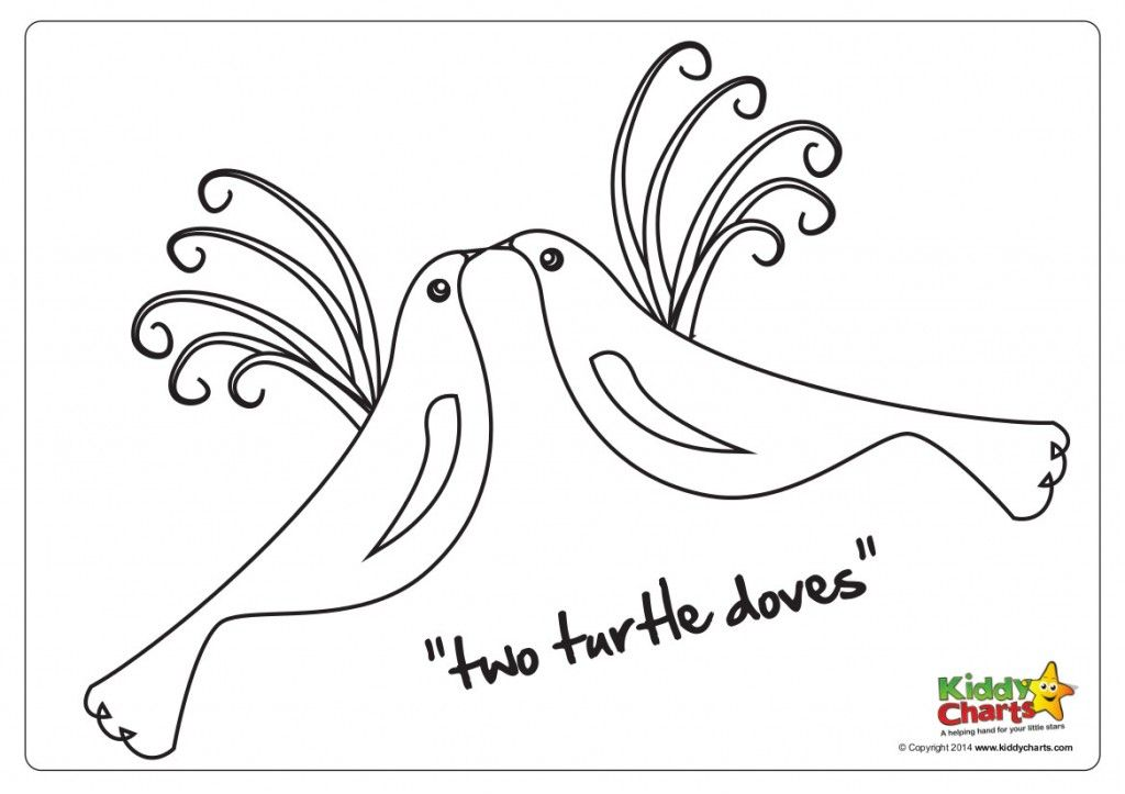 On The Second Day Of Christmas Two Turtle Doves Christmas