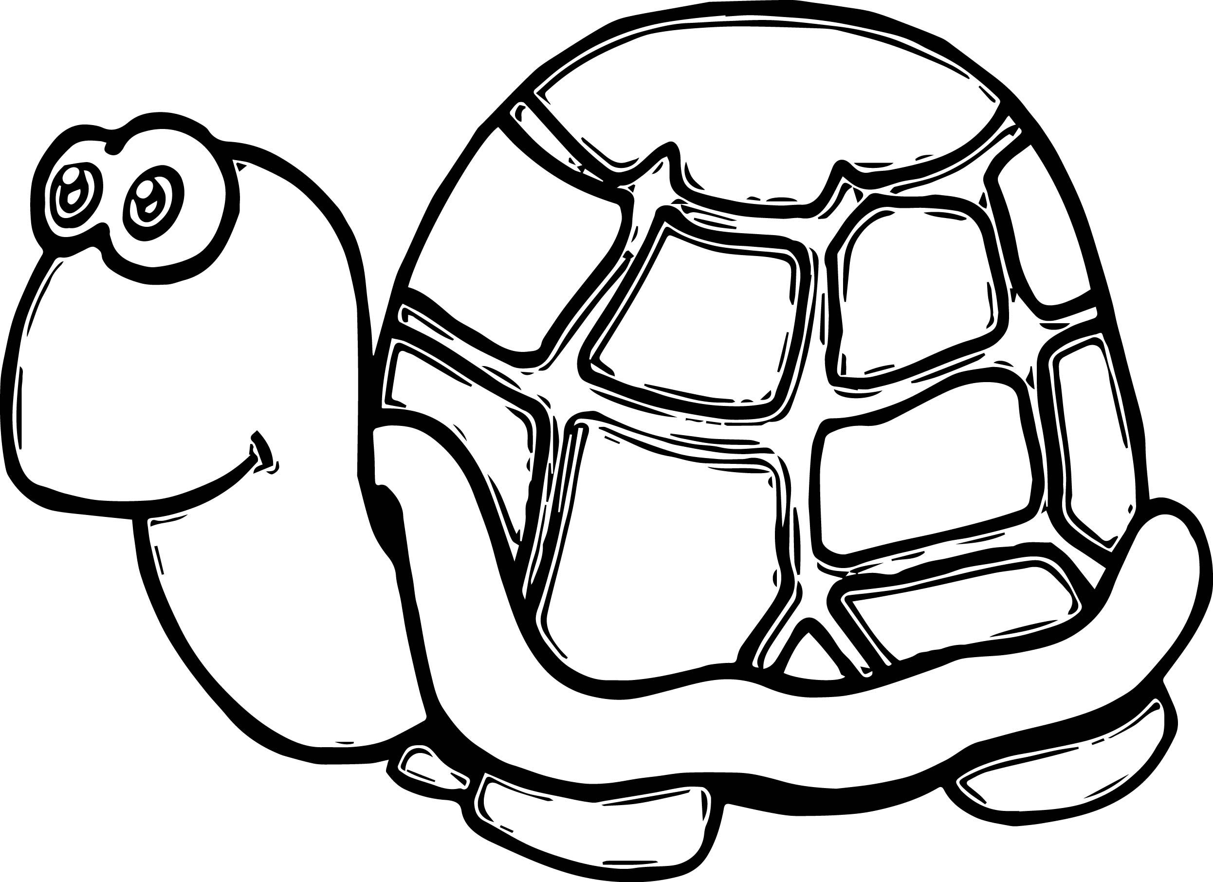 Awesome Cute Tortoise Funny Turtle Coloring Page Turtle Coloring Pages Cute Tortoise Turtles Funny
