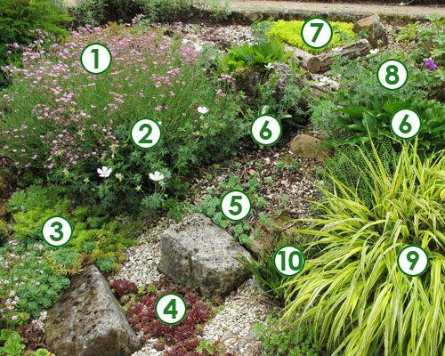 Une rocaille lumineuse et color e sc nes de jardins jardin de rocailles pinterest for Faire une rocaille au jardin