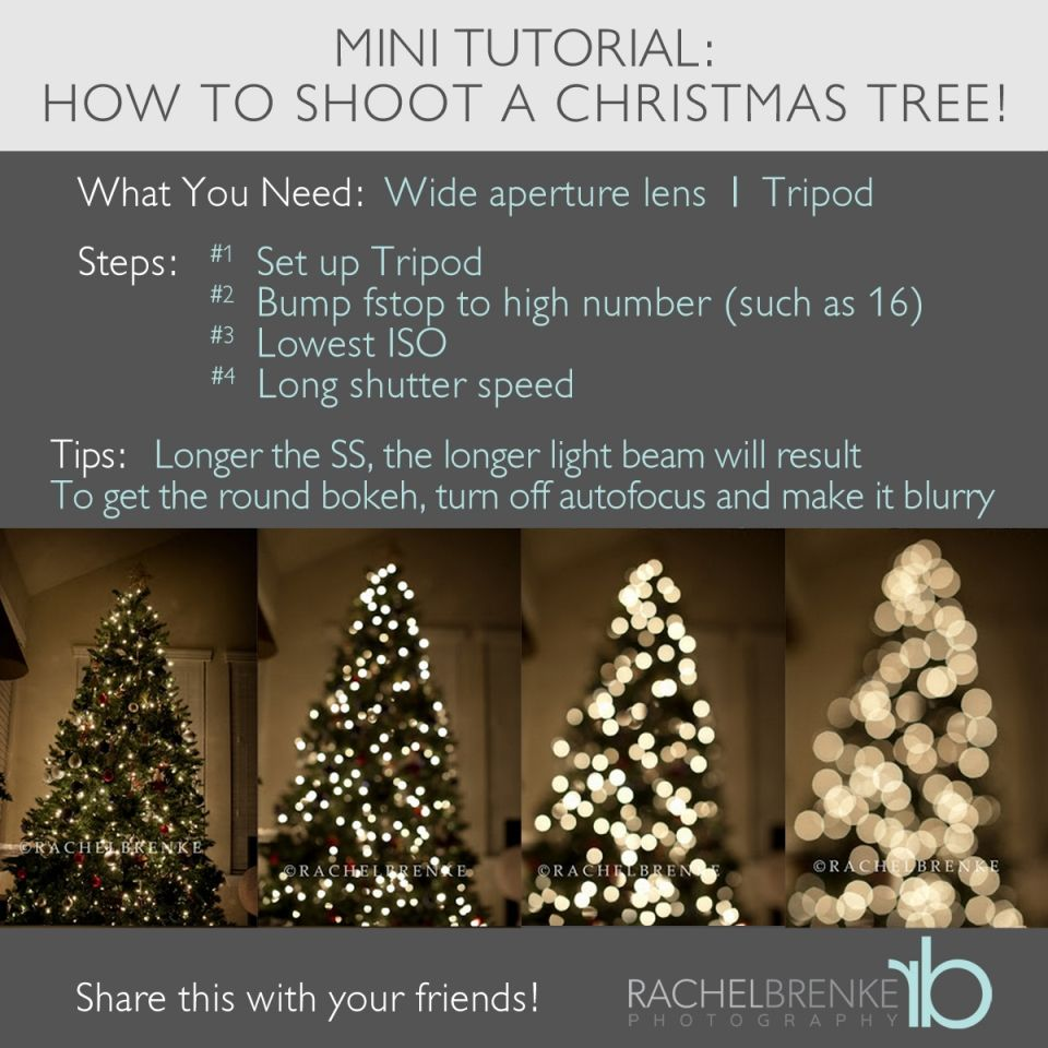 die besten 25 weihnachtsbaum fotos ideen auf pinterest. Black Bedroom Furniture Sets. Home Design Ideas