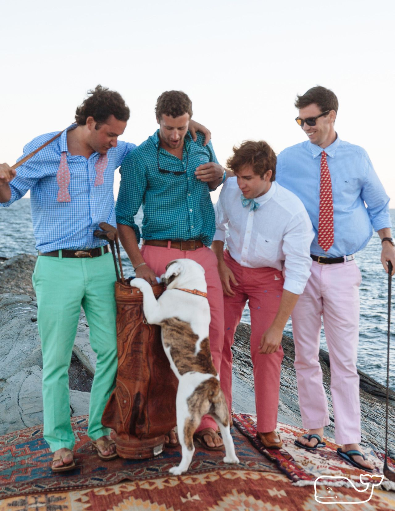 vineyardvines:  With special guest: Freddy the Bulldog