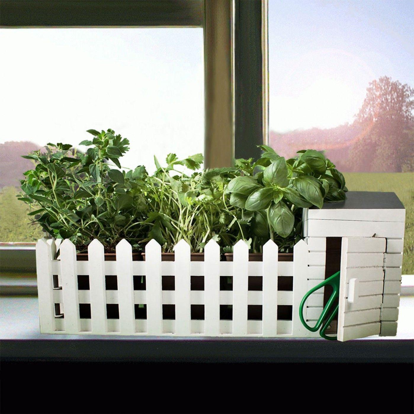 mini jardin d int rieur products i love pinterest. Black Bedroom Furniture Sets. Home Design Ideas