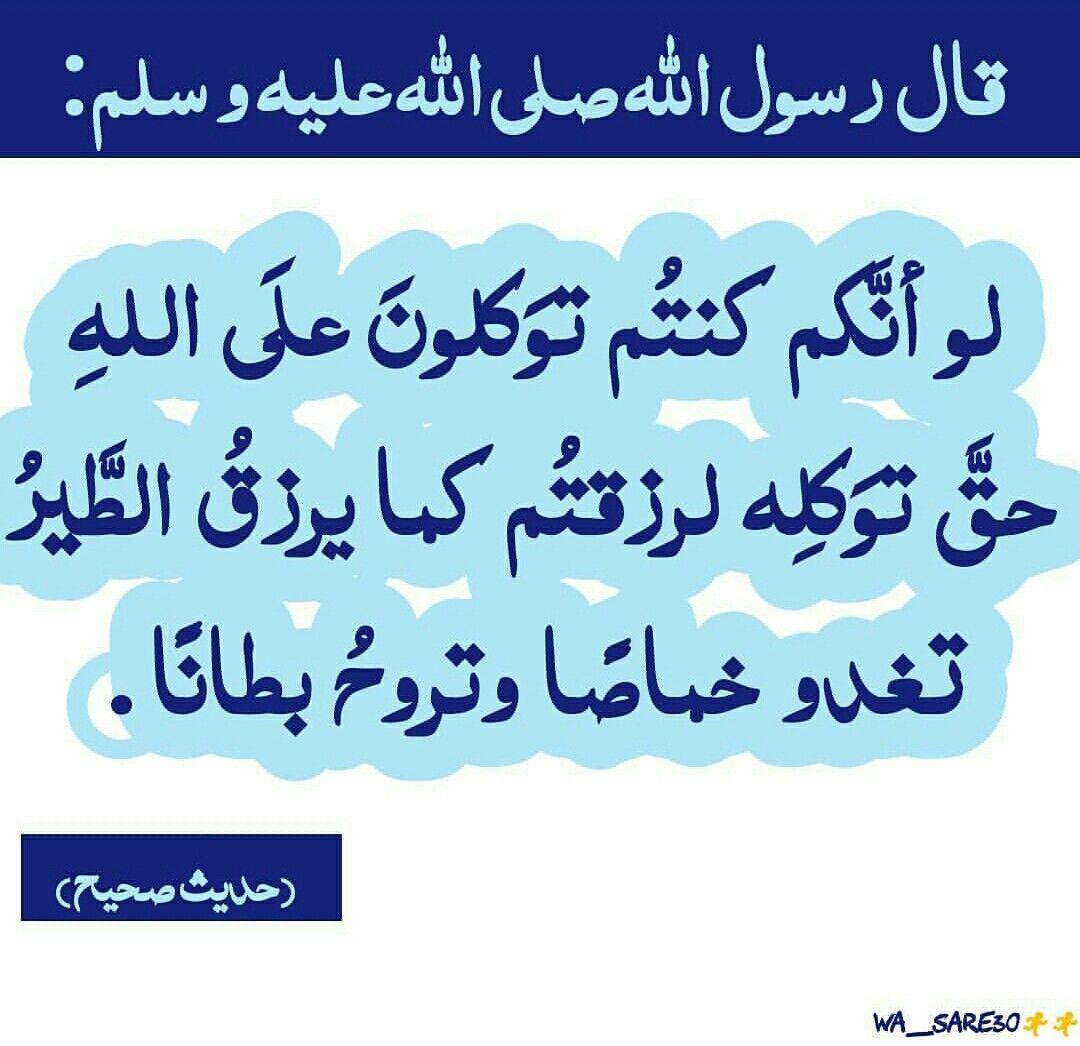 لو أنكم كنتم توكلون على الله حق توكله لرزقتم Instagram Photo Photo And Video Instagram