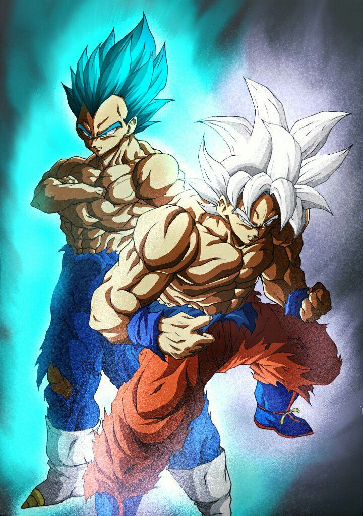 Goku vegeta dragon ball pinterest goku dragon - Dbz goku vegeta ...