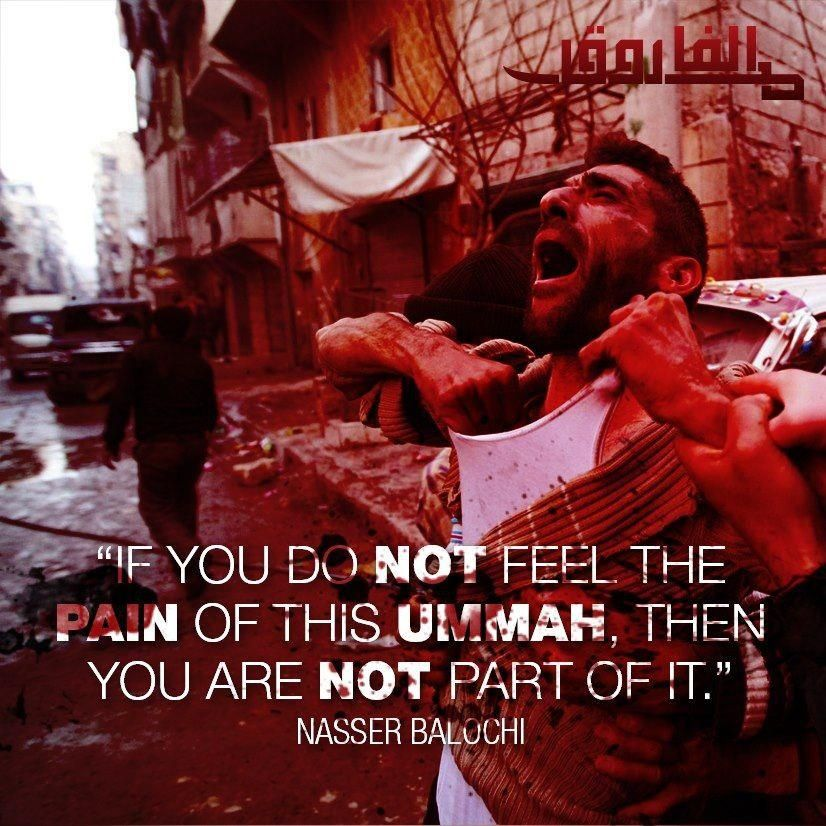 This Ummah Is Like One Body If One Part Is Hurt Then Whole Body