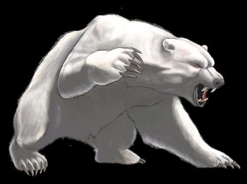 Angry White Bear Png Clipart Bear Artwork Polar Bear Art Bear Sketch