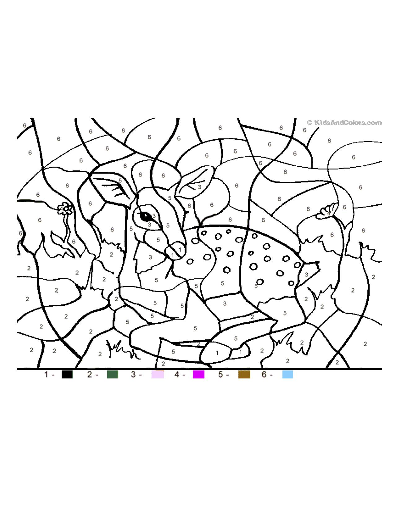 Letter D / Deer color by number