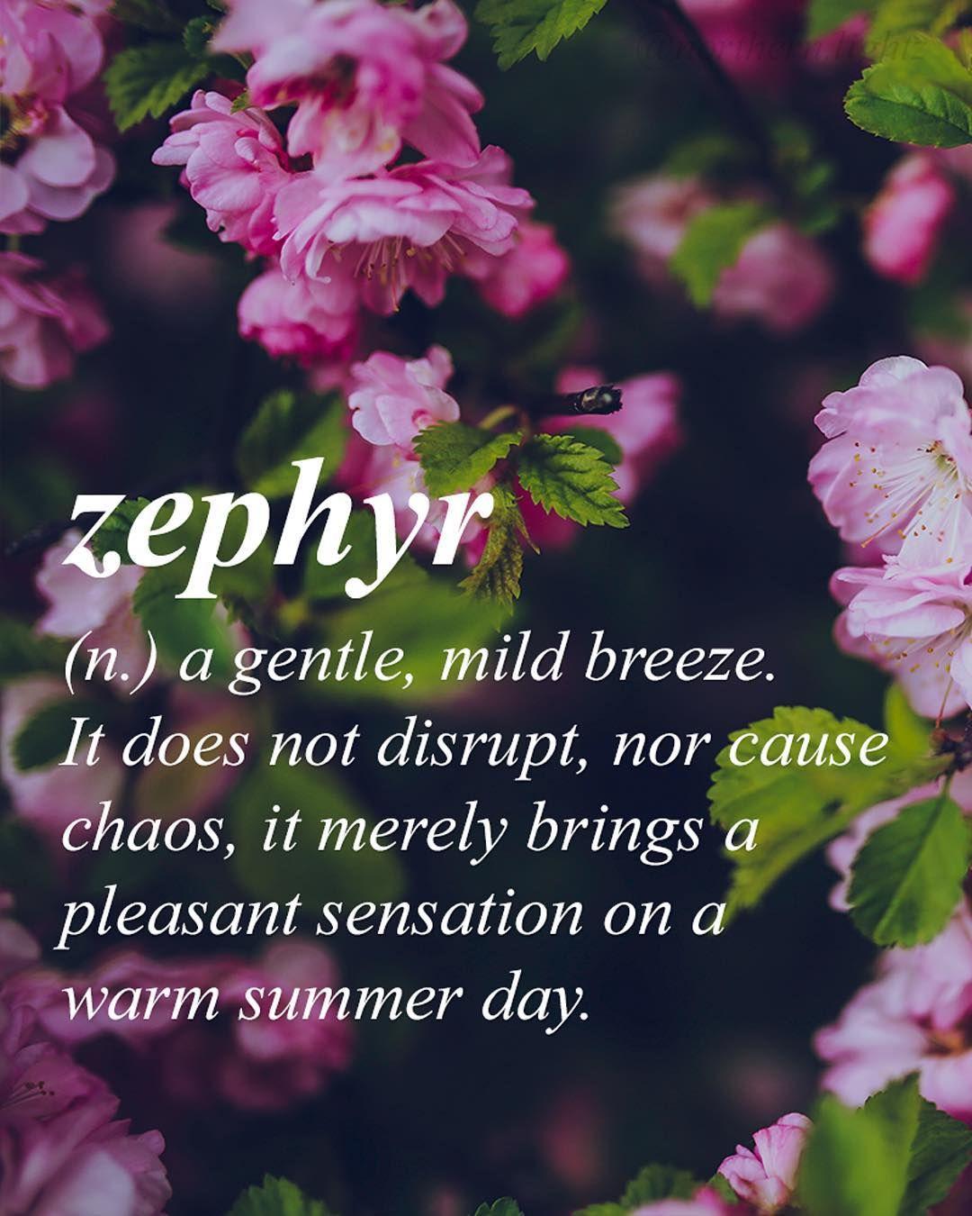 "Funny Words That Start With Z : funny, words, start, ᴾᴿᴱᵀᵀᵞ, ᵂᴼᴿᴰˢ, ᴰᴱᶠᴵᴺᴵᵀᴵᴼᴺˢ, Instagram:, ""Deemed, Beautiful, Words, English, Language, Eu…, Unusual, Words,, Uncommon"