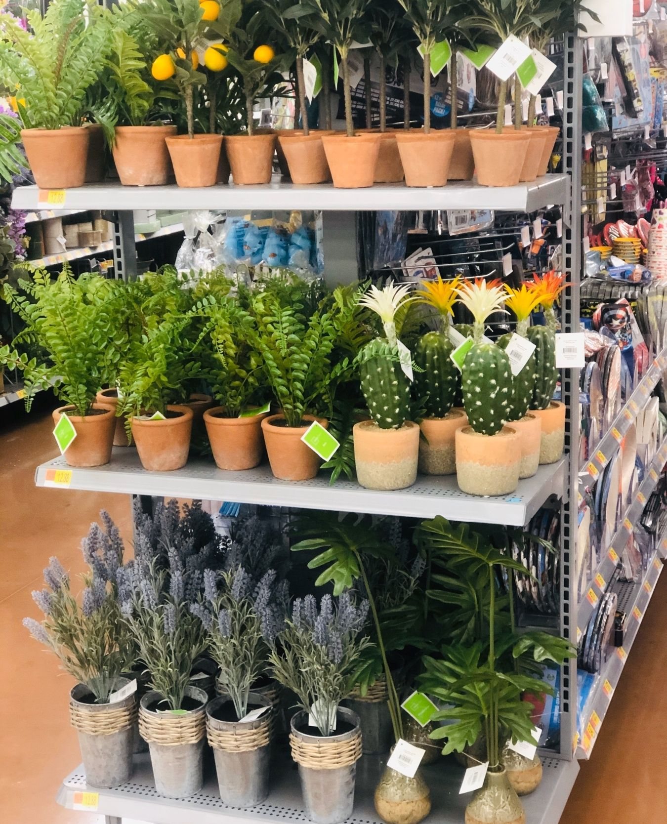 These cute faux plants from @walmart are a great way to spruce up any space in your home for Spring! Shop these plants at your local Walmart!  . Follow us @nowinthesouth  . #walmart #walmartfinds #walmarthome #walmartdecor #walmartstyle #walmarts #forthehome #decor #homedecor #homedecorlover #homedecoration #homedecorlovers #homedecorshop #deals #homesweethome #homedesign #homestyle #palnts #plantshelfie #fauxplants #fauxplantsscape #fauxplantsforthewin #fauxplantsdecor