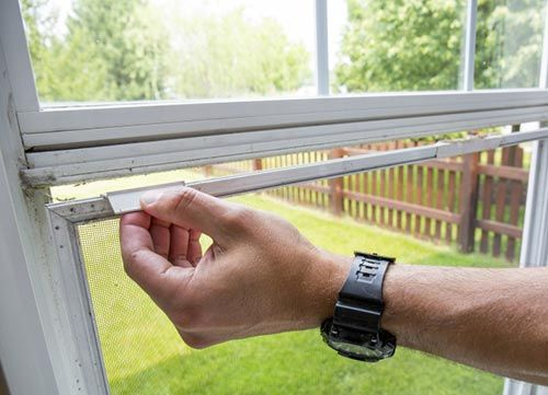 How To Clean Window Screens The Correct Way Cleaning