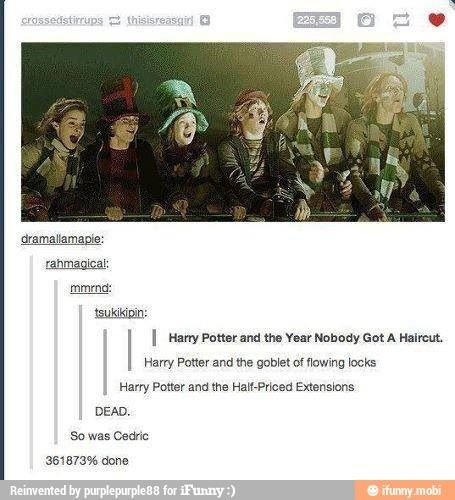 The Year Nobody Got A Haircut Harry Potter Tumblr Harry Potter Tumblr Posts Harry Potter Funny