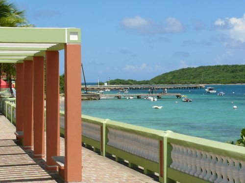 Vieques Home To Mosquito Bay And Lots Of Amazing Beaches One The Very