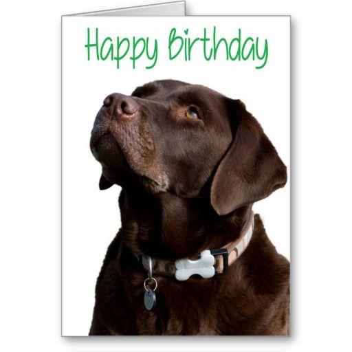 Happy Birthday Brown Labrador Retriever Puppy Card Zazzle Com In 2021 Labrador Brown Labrador Labrador Retriever Puppies
