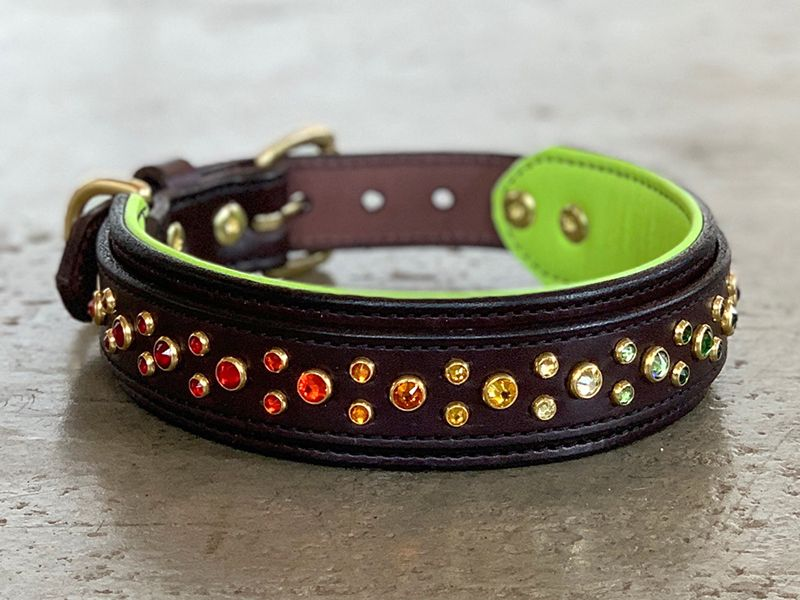 Designed For Large To Giant Breed Dogs Over 60 Lbs Shown In Mahogany Leather With An Apple Green Lining Brass Leather Dog Collars Custom Dog Collars Leather