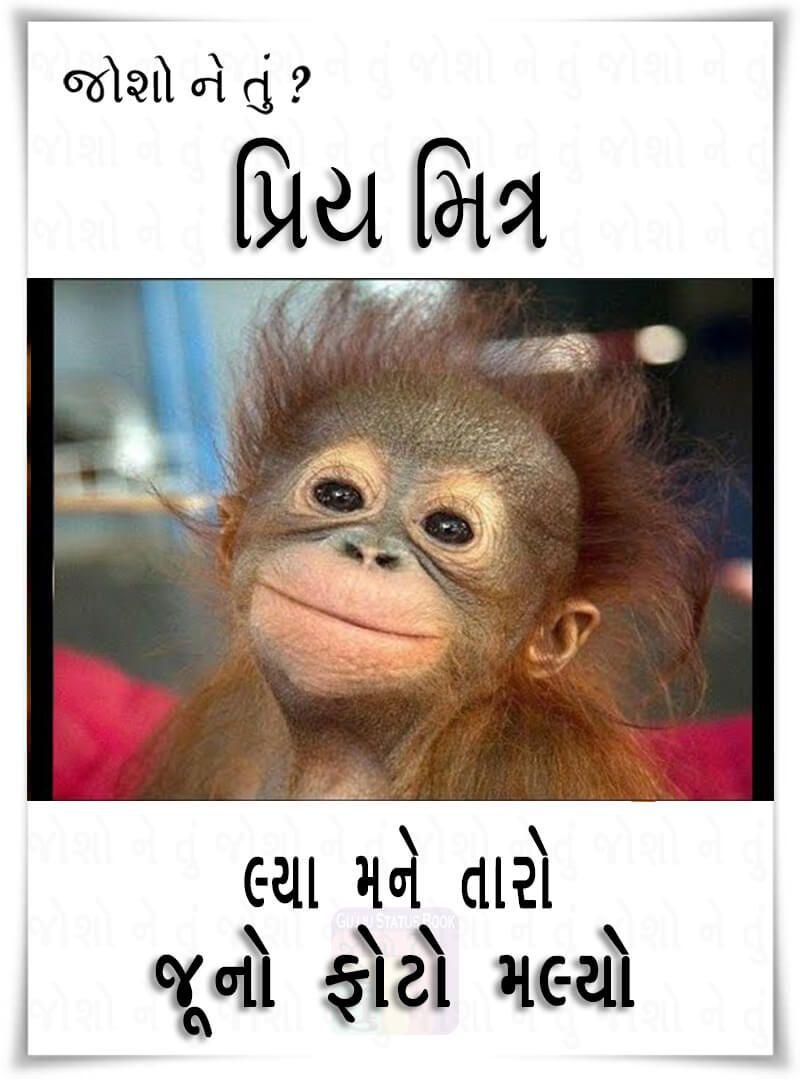 Funny Friendship Shayari In Gujarati : funny, friendship, shayari, gujarati, Funny, Friendship, Shayari, Gujarati