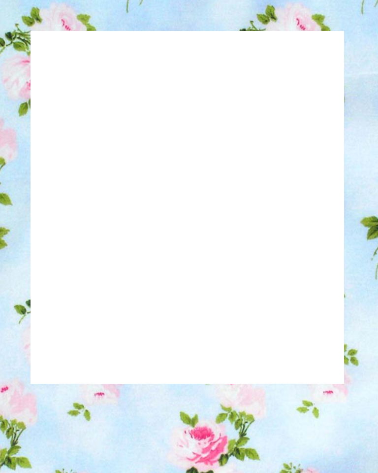 polaroid png template