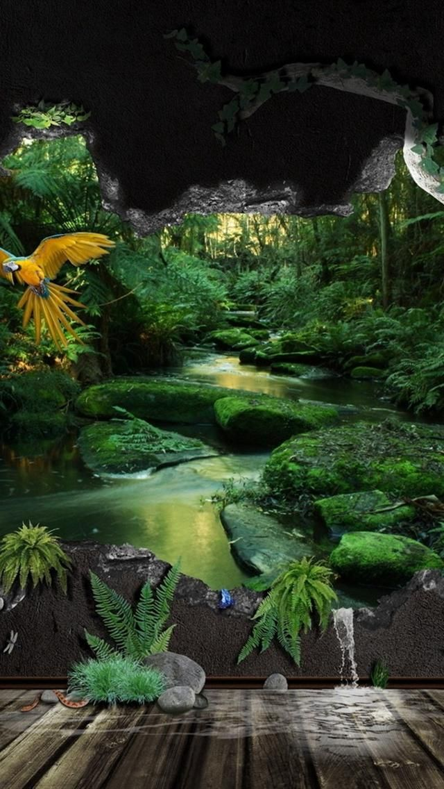 Hd Green Nature iphone 5 wallpapers | iPhone 5 Wallpapers | Qhd wallpaper, Jungle pictures ...
