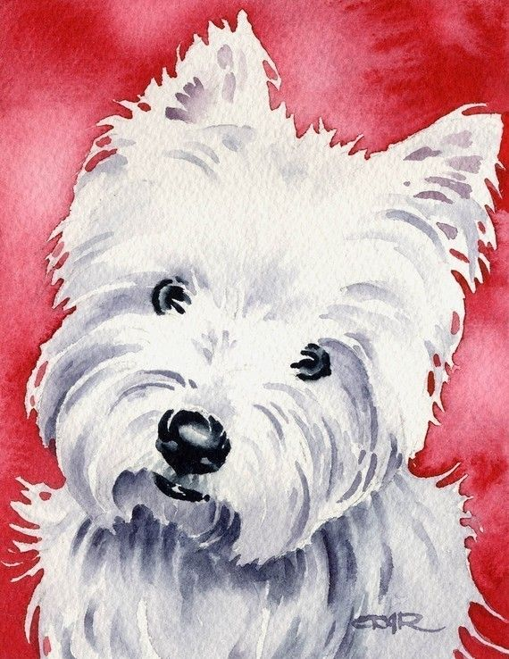 Westie Painting West Highland White Terrier Westie Puppy Dog