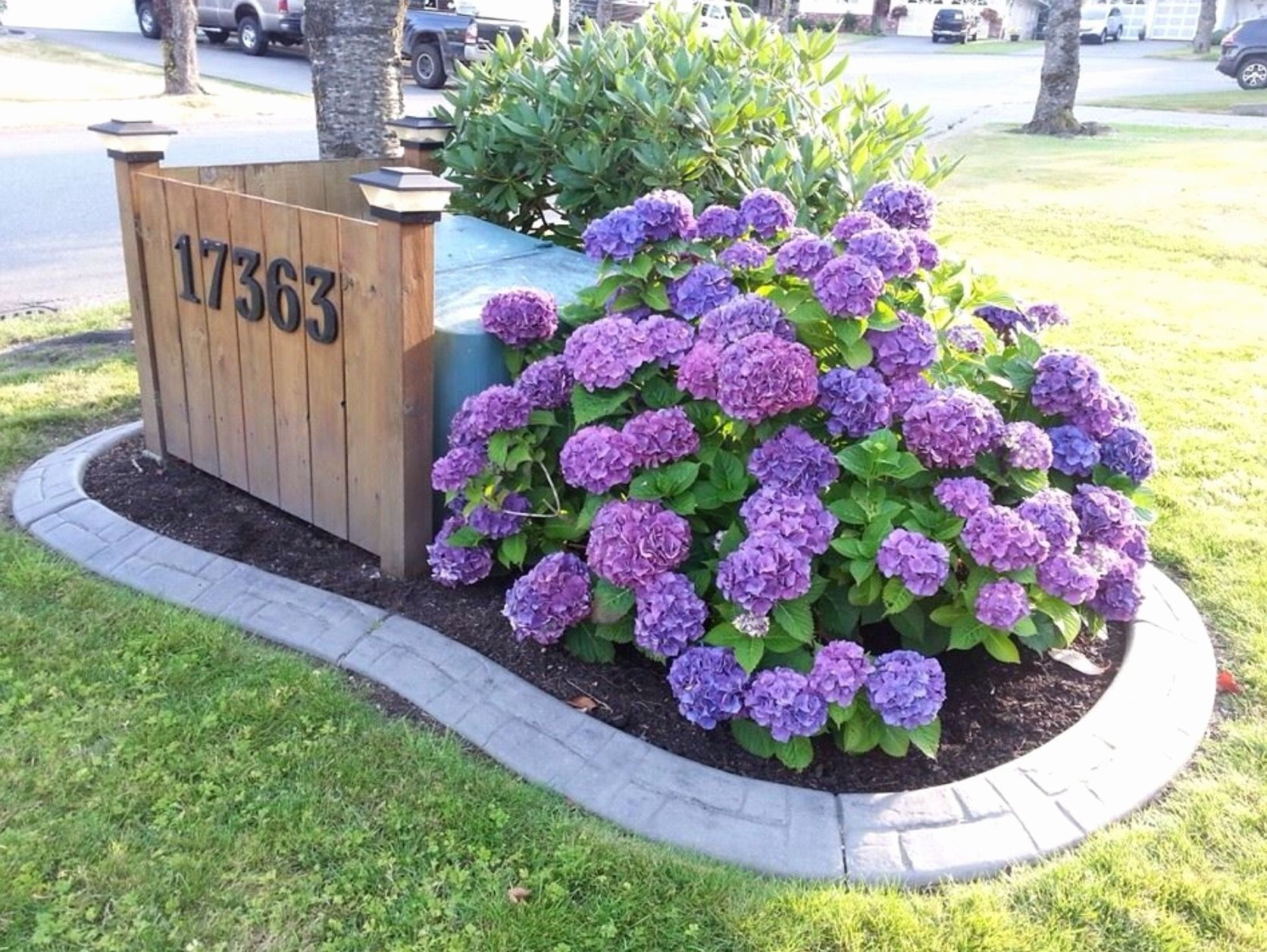 Landscape Ideas To Hide Utility Boxes Fresh Pin By Rosa Boucher On