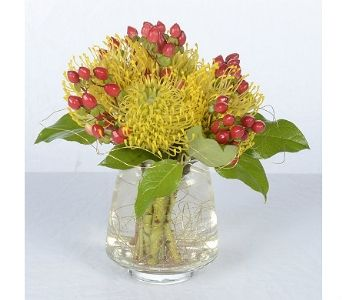 Simply protea by bell flowers bell flowers custom designs pinterest order simply protea from bell flowers your local silver spring florist send simply protea for fresh and fast flower delivery throughout silver spring mightylinksfo Image collections