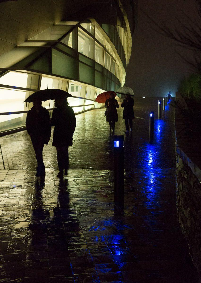 Camiño de luces. Foto: Manuel G. Vicente.