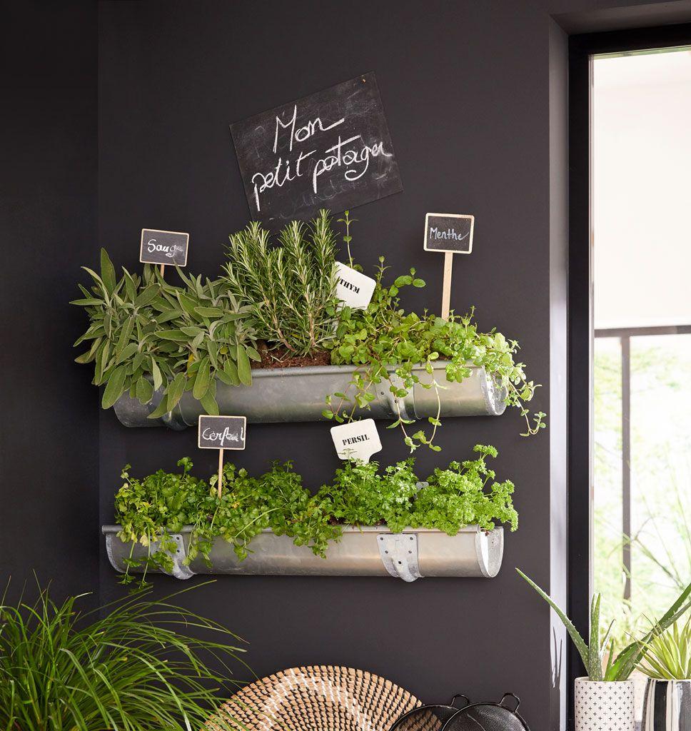 Des herbes aromatiques dans la cuisine  Idee decoration cuisine
