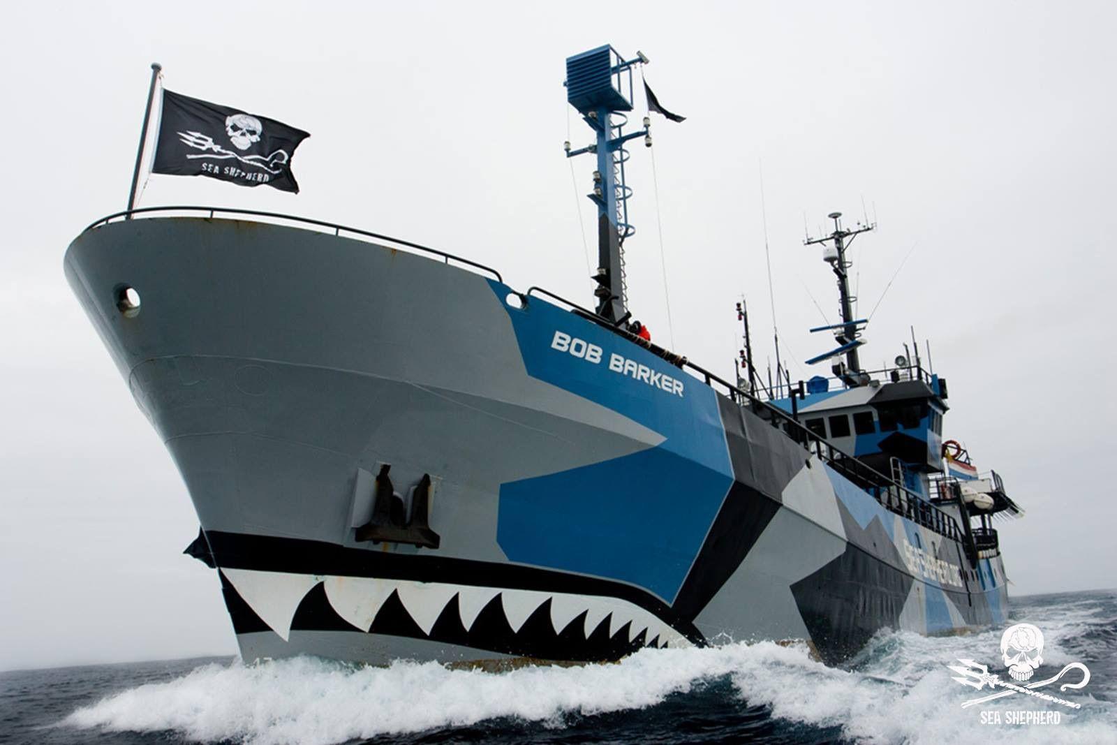 MV Bob Barker #seashepherd #ship #vessel #neptunesnavy   Sea shepherd,  Ocean, Fleet of ships