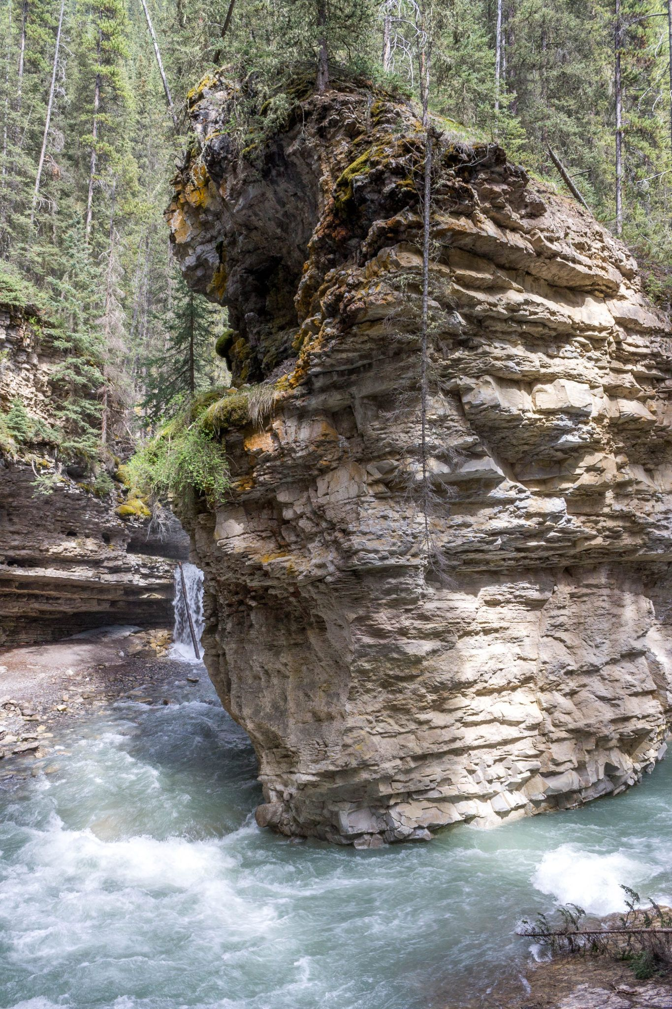 Banff's Best Easy Hike: Johnston Canyon #travelbugs