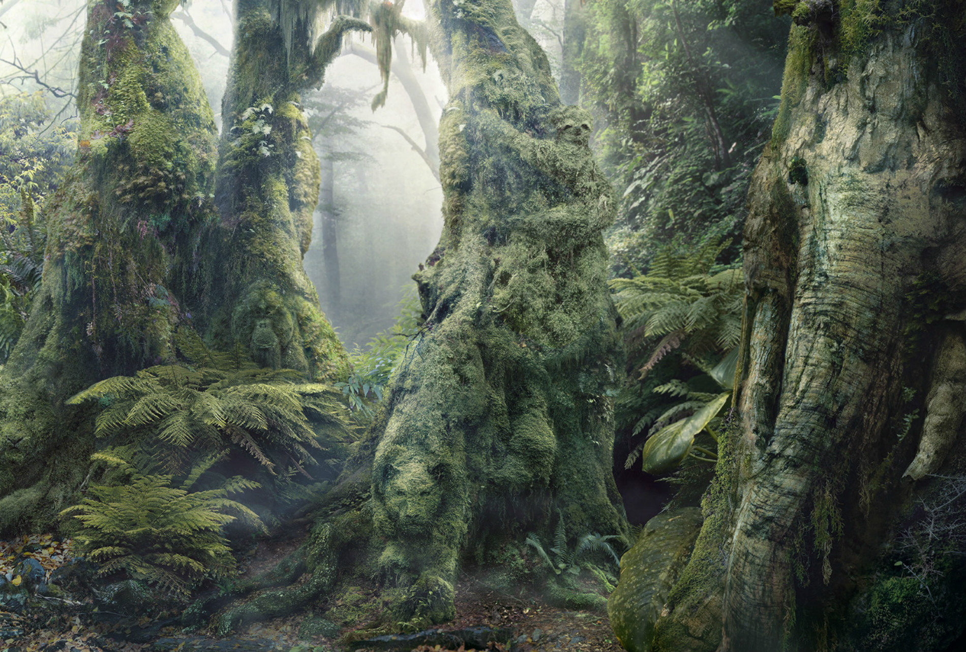 The Rainforest Of Hidden Animals Optical Illusion