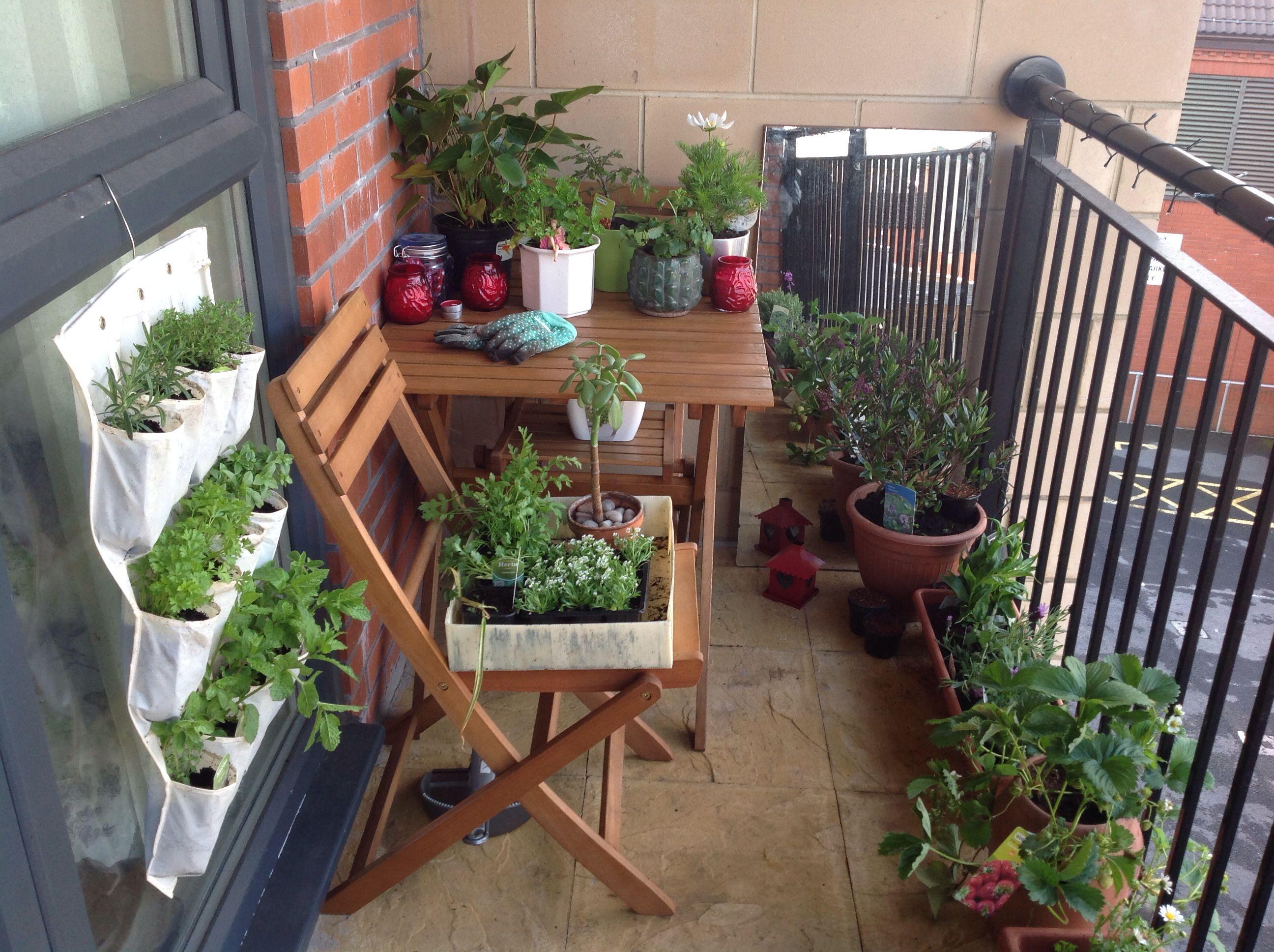 balcony garden :) been busy this weekend! sun sun sun and green, Gartengerate ideen
