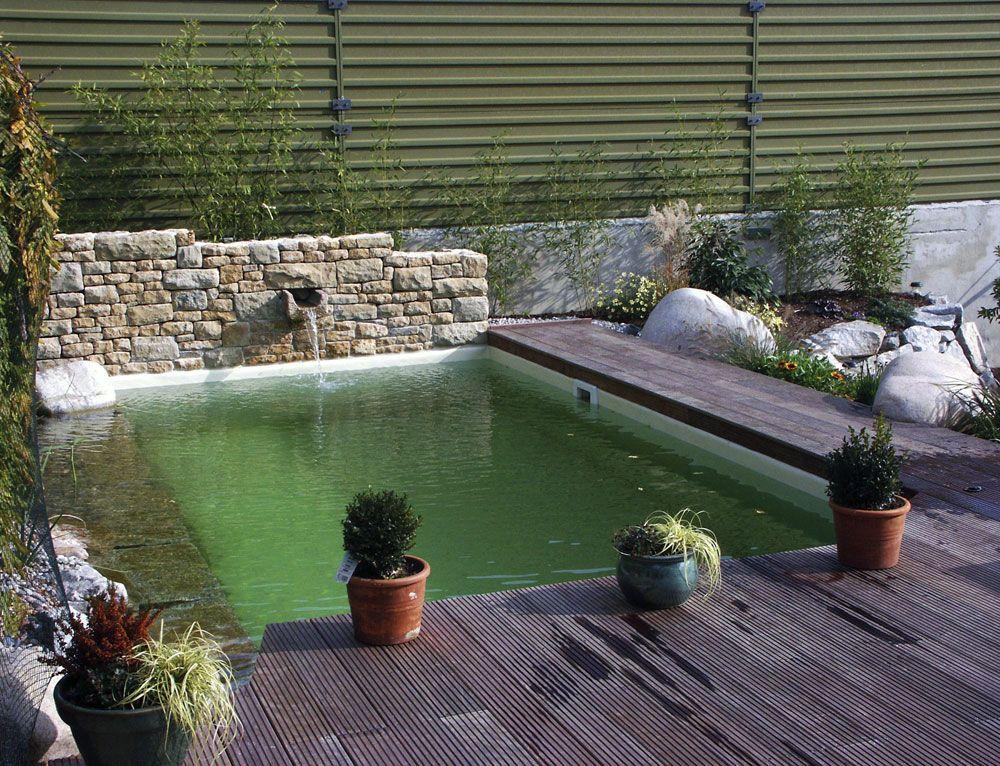 Petite piscine naturelle sierentz dans le 68 jardin for Fabriquer une petite piscine