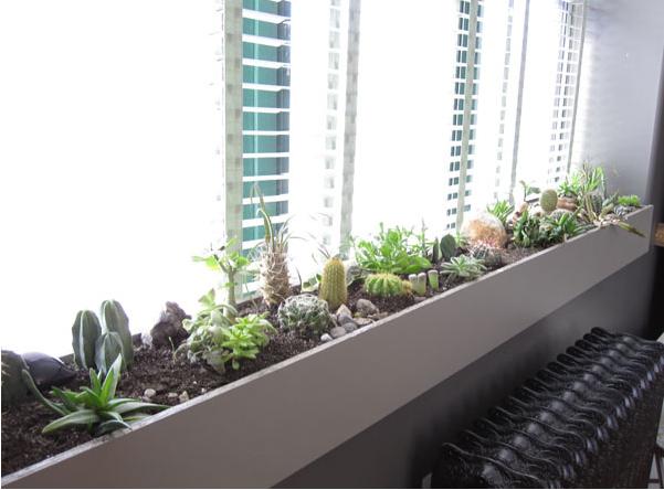 Bring Your Window Box Inside Succulent Garden Indoor Indoor