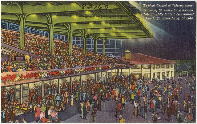 Typical Crowd At Derby Lane Home Of St Petersburg Kennel Club