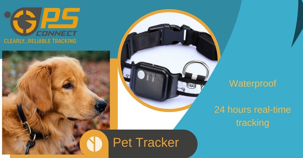 Pets Are Smart And Comforting But They Too Need Human Care And Protection Happy Pets Come From Happy Homes The Safer T Pet Tracker Safe Family Happy Animals