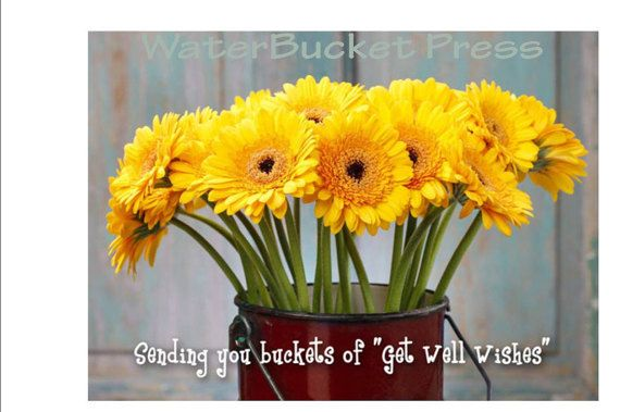 Digital Get Well Card Daisies by WaterBucketPress on Etsy
