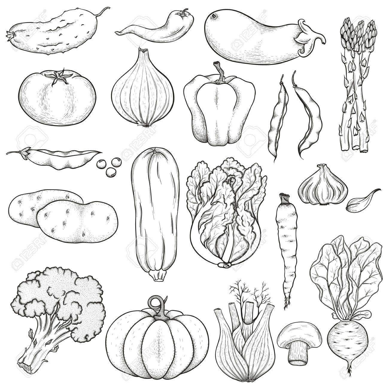 clipart vegetables black and white google search mfm
