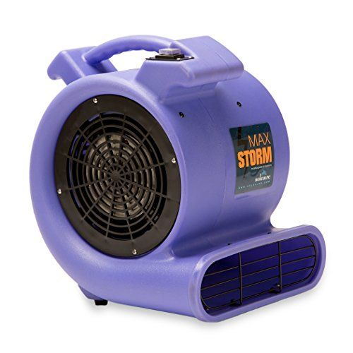 Top 10 Air Blowers Carpet Dryers Of 2020 Squirrel Cage Blowers Janitorial