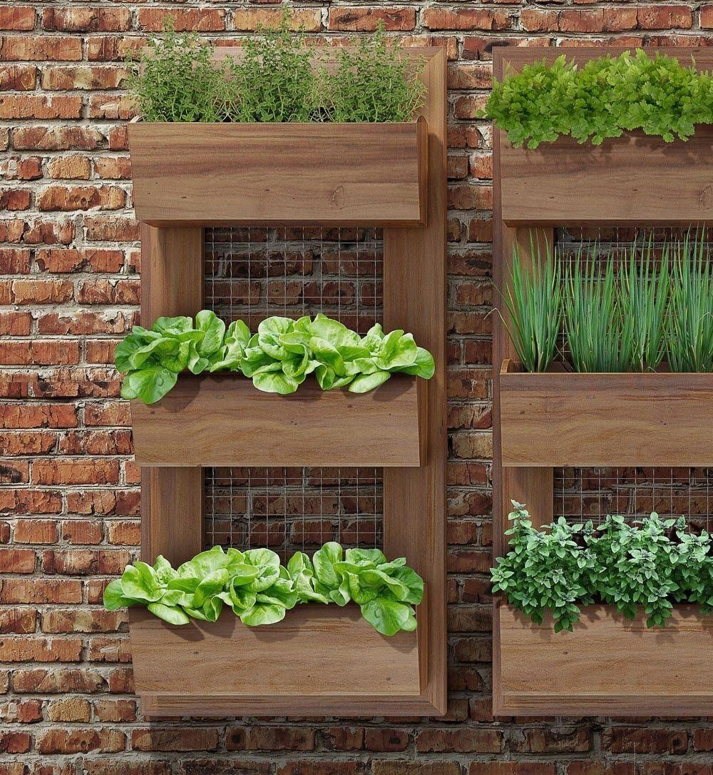 Easy Landscaping Ideas You Can Try: Creative Indoor Herb Garden Designs You Should Try Simple