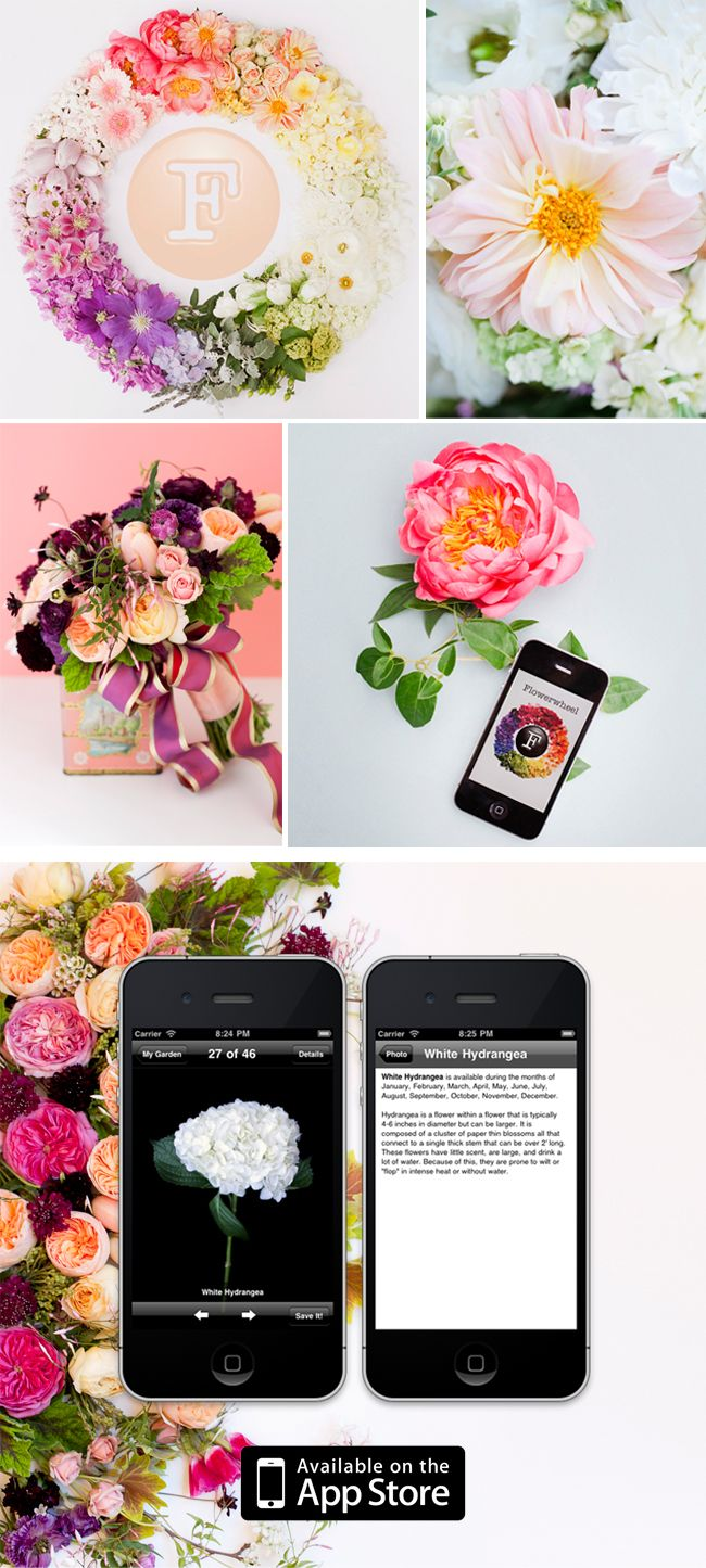Sponsored post flowerwheel weddings wedding and unique weddings flowerwheel to help you pick the right mix of flowers for your big day izmirmasajfo