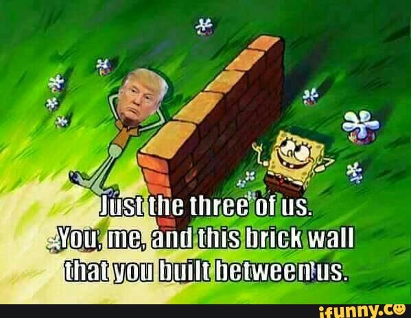 Funny Trump Wall Meme : Found on memes spongebob memes and sponge bob