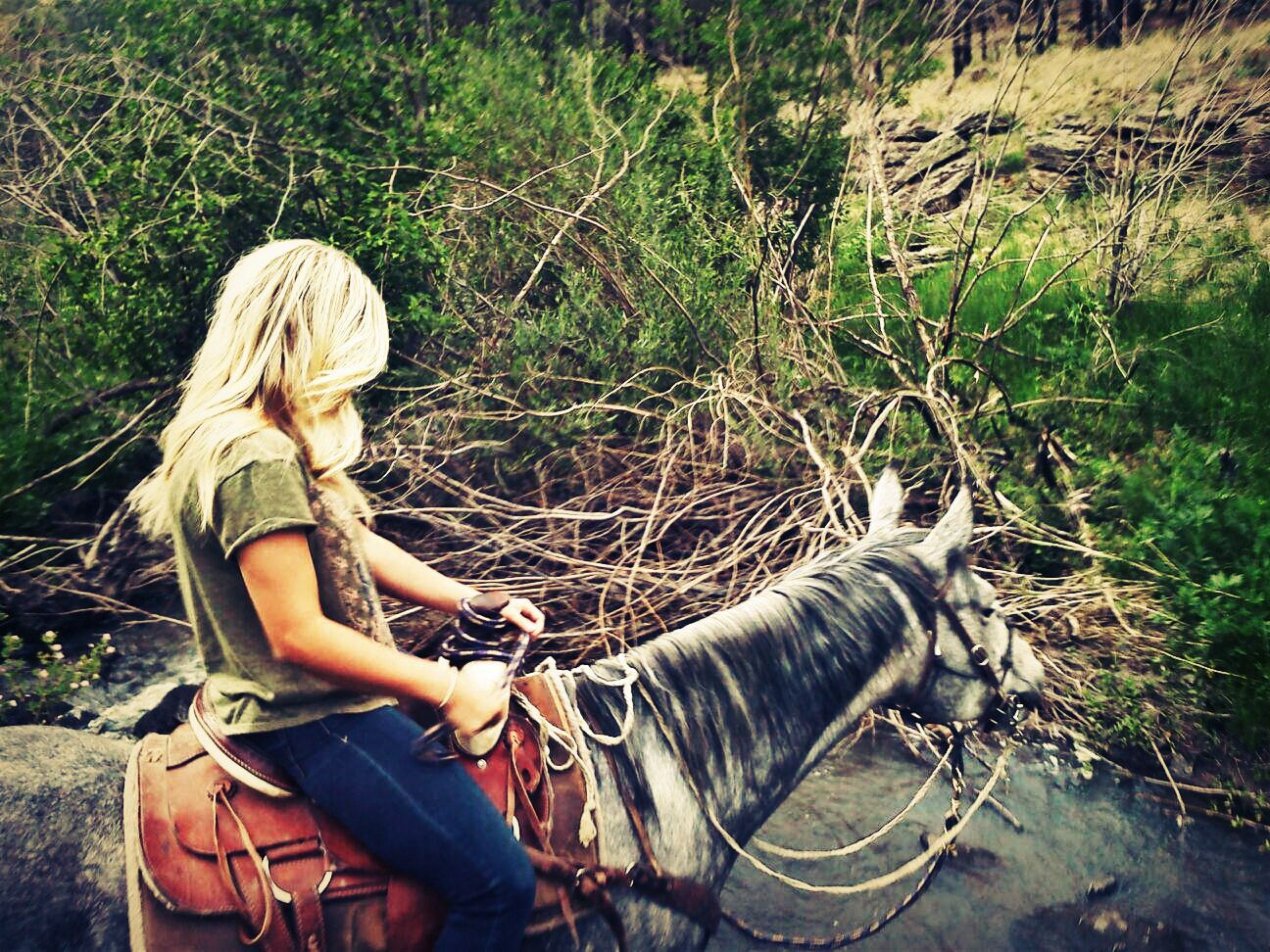 Riding horses / blonde