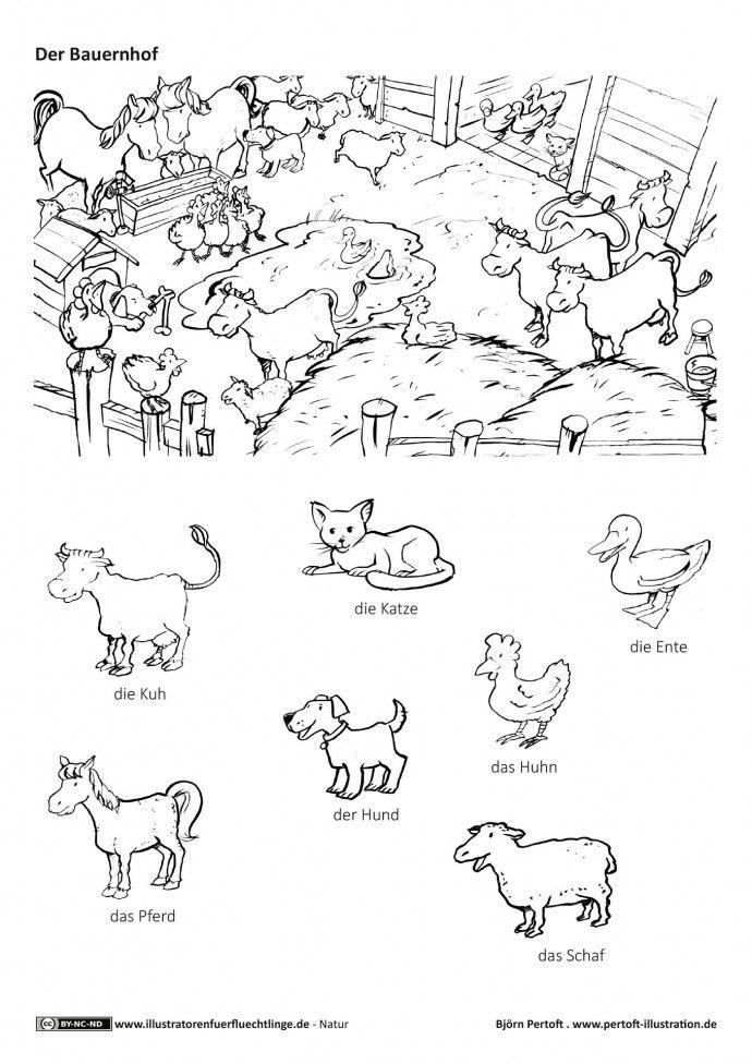 Bauernhof Haustiere Nutztiere Tiere Nutztiere Bauernhof Tiere Bauernhof