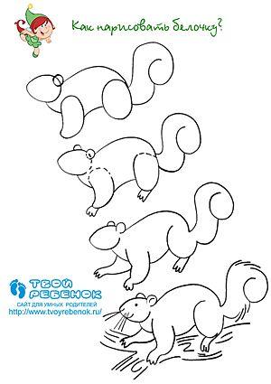 Hoe Teken Je Een Eekhoorn Uroki Risovaniya Besplatnaya Grafika Uroki Iskusstva