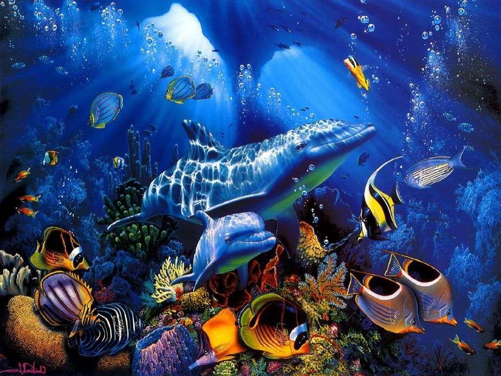 fantasy underwater photography Dolphin Blue Underwate