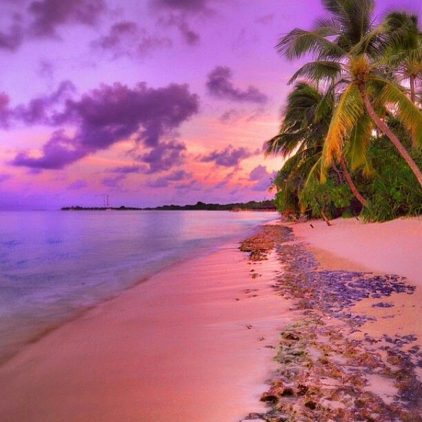 Pin By Eunice Zorin On Island Paradise