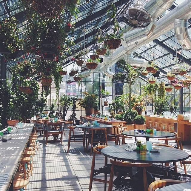The commissary rooftop bar part of the superb line hotel for Garden cafe designs