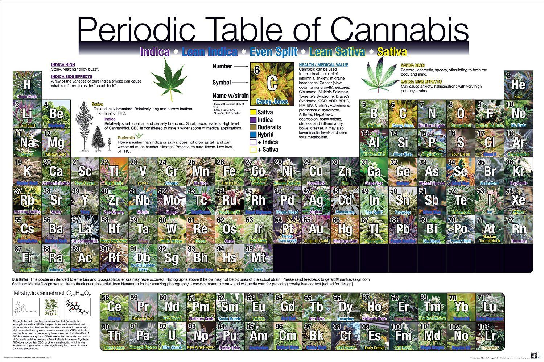 Periodic table of cannabis - SeeYouGuys.com