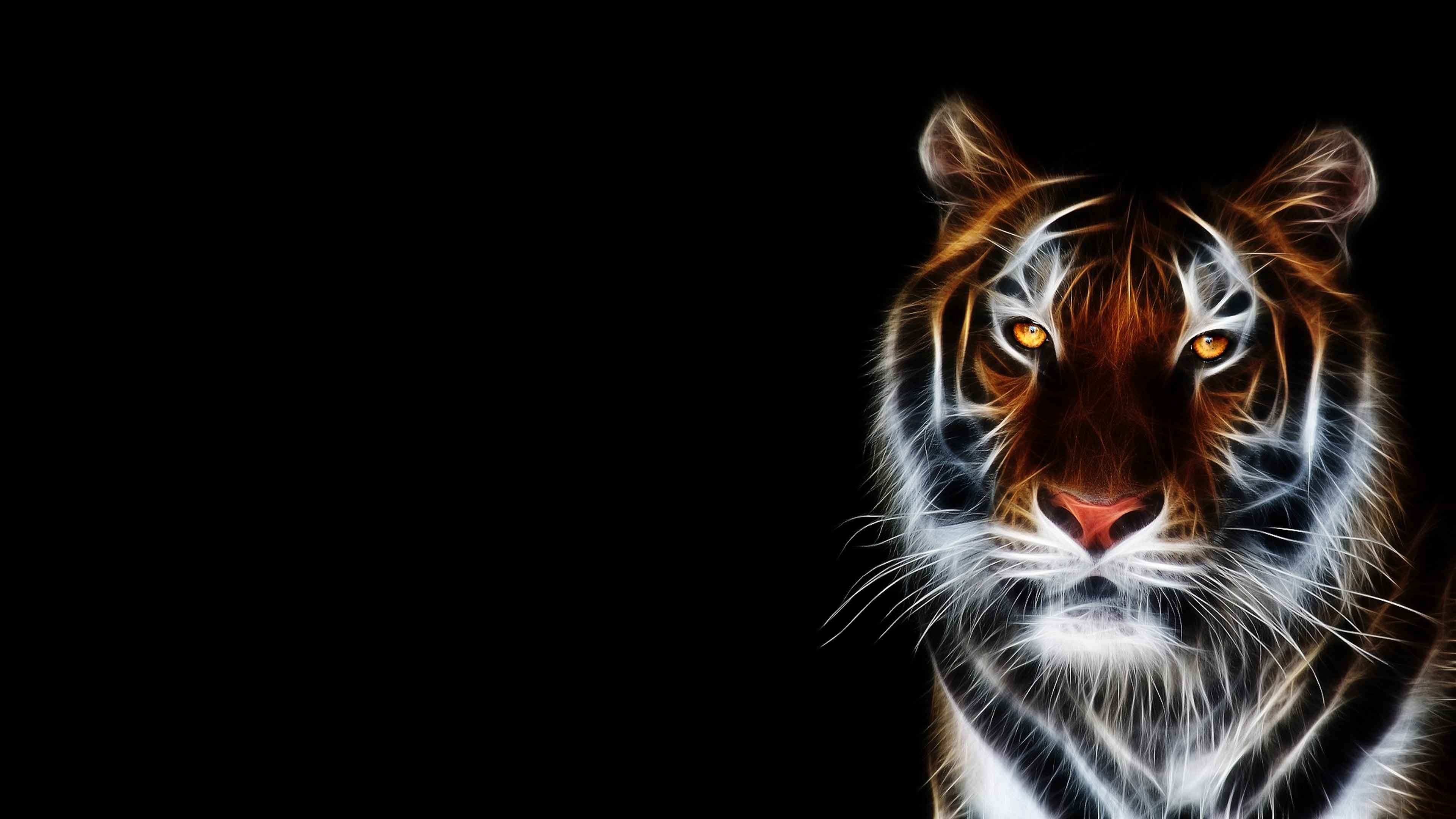 3d Tiger Wallpaper Desktop Animal Wallpaper Tiger Wallpaper